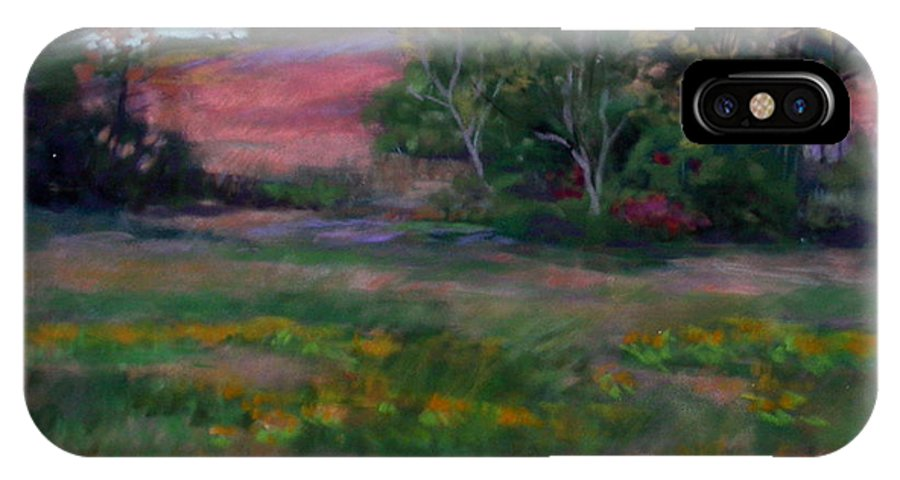 Autumn Landscape... Afternoon IPhone X Case featuring the painting Goldenrod Afternoon by Julie Mayser