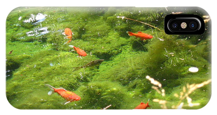 Goldfish IPhone X Case featuring the photograph Goldfish in a Pond by Devorah Shoshanna