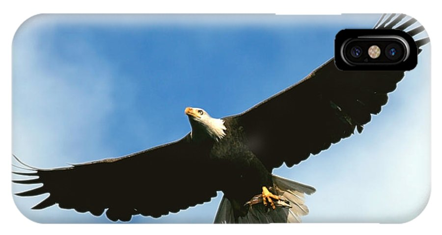 Bald Eagle IPhone X Case featuring the photograph Good Catch by Randall Ingalls