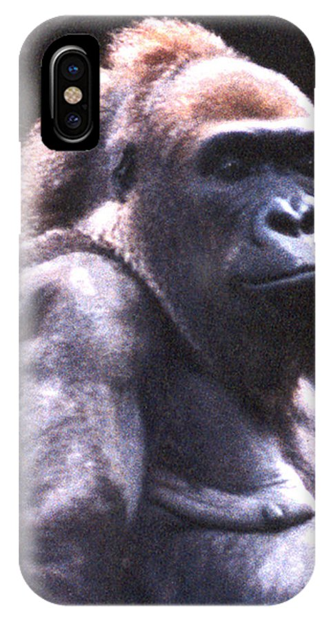 Gorilla IPhone Case featuring the photograph Gorilla by Steve Karol
