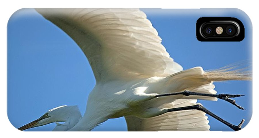 Egret IPhone X Case featuring the photograph Graceful Flight by Kenneth Albin