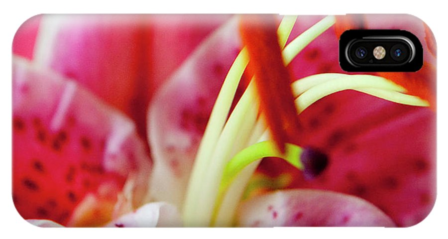 Flora IPhone X Case featuring the photograph Graceful Lily Series 20 by Olga Smith
