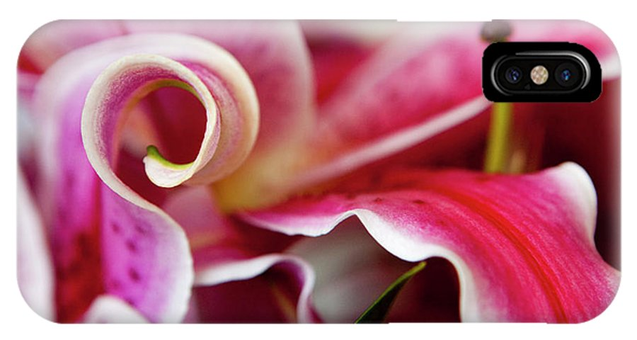 Flora IPhone X Case featuring the photograph Graceful Lily Series 25 by Olga Smith