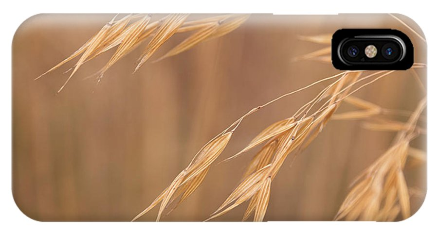 Stipa IPhone X Case featuring the photograph Grass In The Wind by Monika Tymanowska