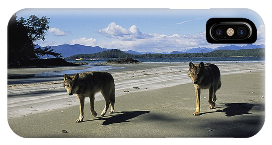 Pacific Ocean IPhone X / XS Case featuring the photograph Gray Wolves On Beach by Joel Sartore