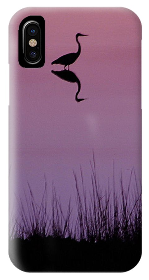 Great Blue Heron IPhone X Case featuring the photograph Great Blue Heron IIi by Brett Winn