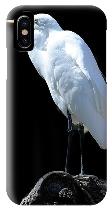 Great Egret IPhone X Case featuring the photograph Great Egret by Keith Lovejoy