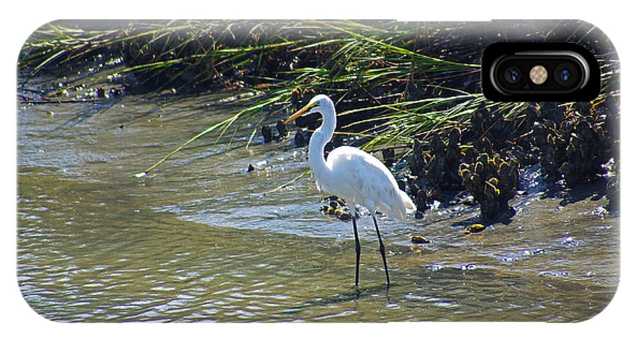 South Carolina IPhone X Case featuring the photograph Great Egret by Rich Walter