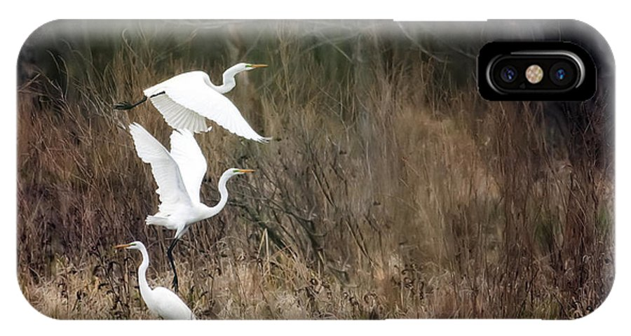 Bird IPhone X Case featuring the photograph Great Egrets by Al Mueller