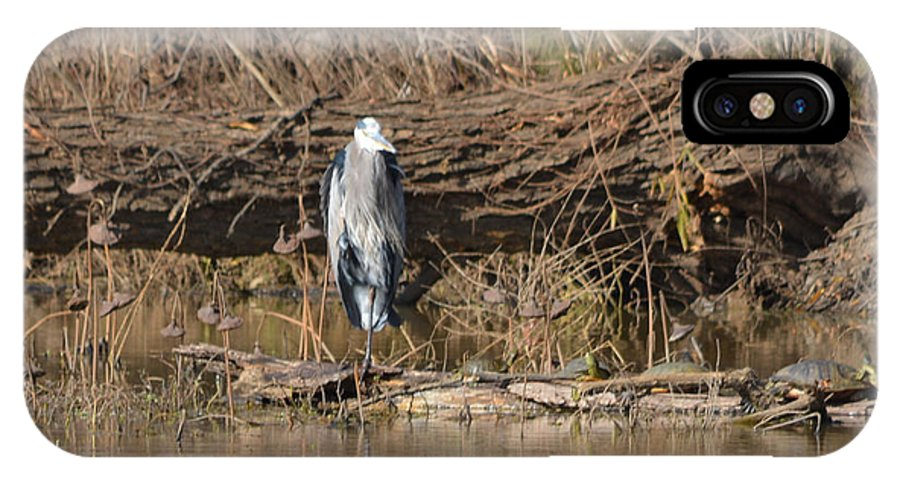 Great Heron And Turtles And Grebe Duck Prints IPhone X Case featuring the photograph Great Heron Turtles And Grebe Duck by Ruth Housley