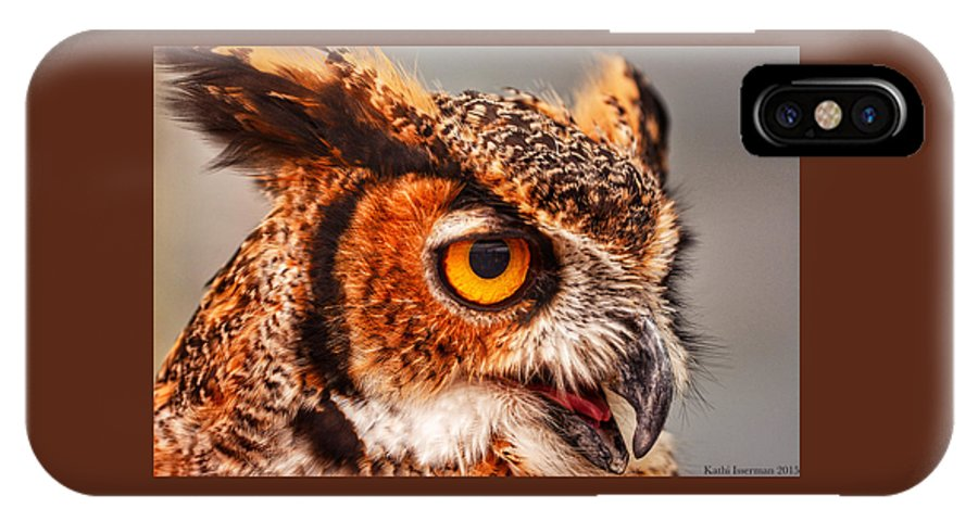 4th Anniversary IPhone X Case featuring the photograph Great Horned Owl by Kathi Isserman