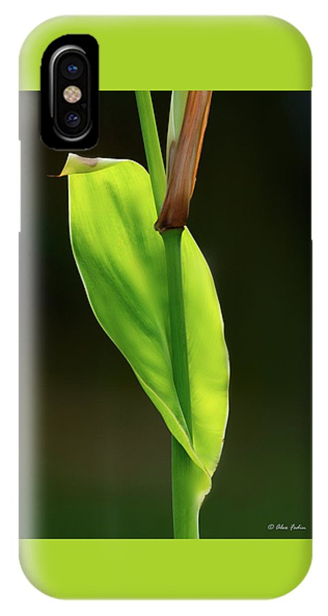 Leaf IPhone X Case featuring the photograph Green by Alexander Fedin