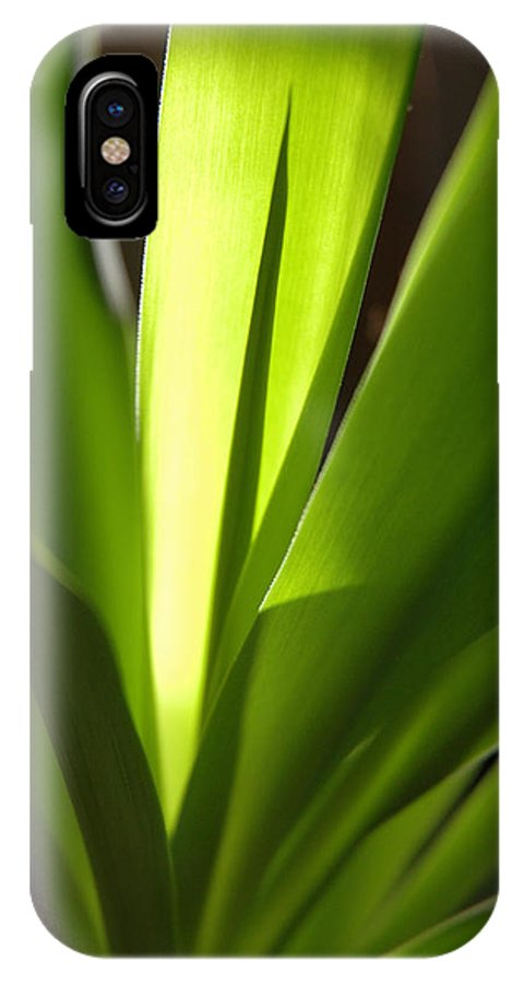 Green IPhone X Case featuring the photograph Green Patterns by Jerry McElroy