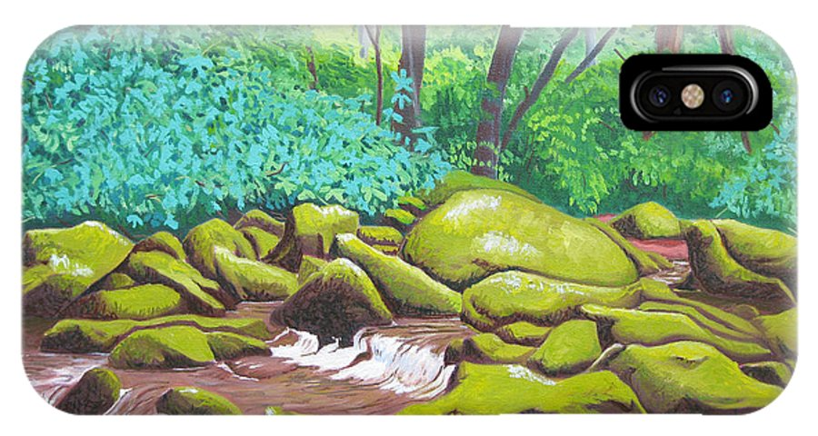 River. North Carolina IPhone Case featuring the painting Green Rocks by D T LaVercombe