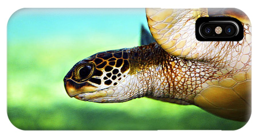 Green IPhone X Case featuring the photograph Green Sea Turtle by Marilyn Hunt
