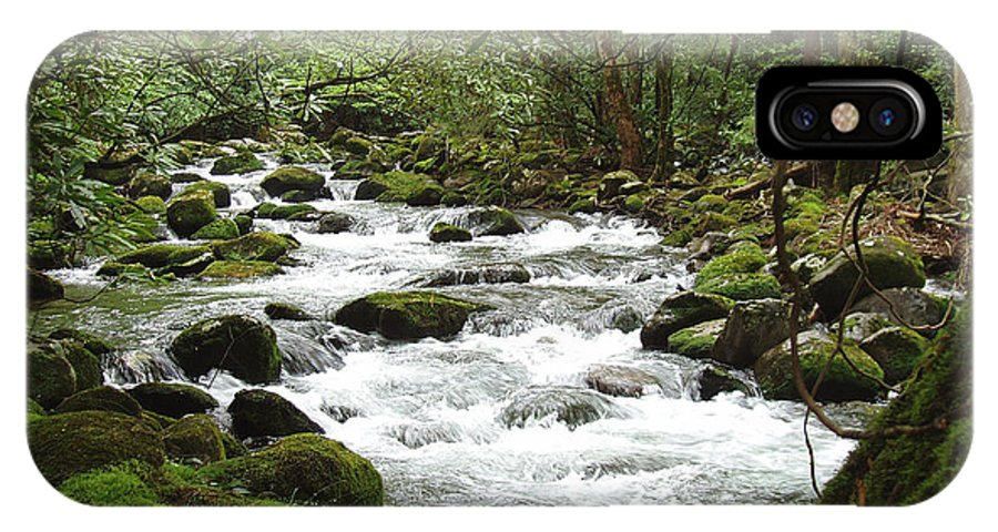 Smoky Mountains IPhone X Case featuring the photograph Greenbrier River Scene 2 by Nancy Mueller