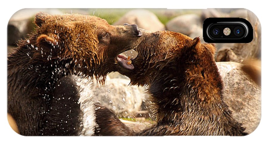 Behavior IPhone X Case featuring the photograph Grizzly Bears In A Battle Of Tooth And Claw by Max Allen