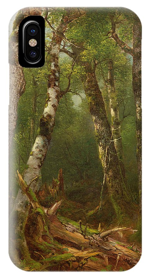 Woodland; Forest; Tree; Wood; Fallen; Birch; Romanticist; Romantic; Hudson River School; Bouleau; Bouleaux; Group Of Trees IPhone X Case featuring the painting Group Of Trees by Asher Brown Durand