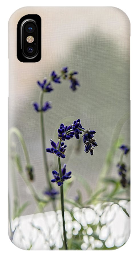 Alternative IPhone X Case featuring the photograph Growing Lavender Vase by Adrian Bud