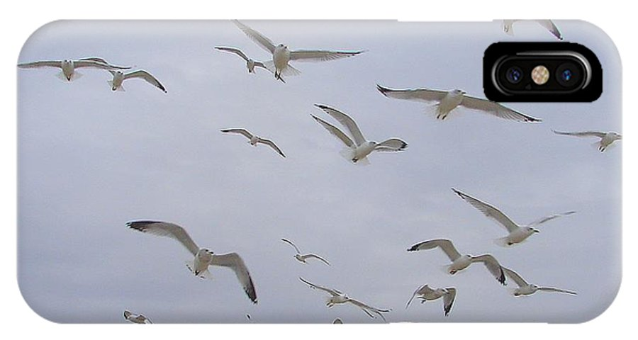 Birds Sky White IPhone X / XS Case featuring the photograph Gulls by Luciana Seymour