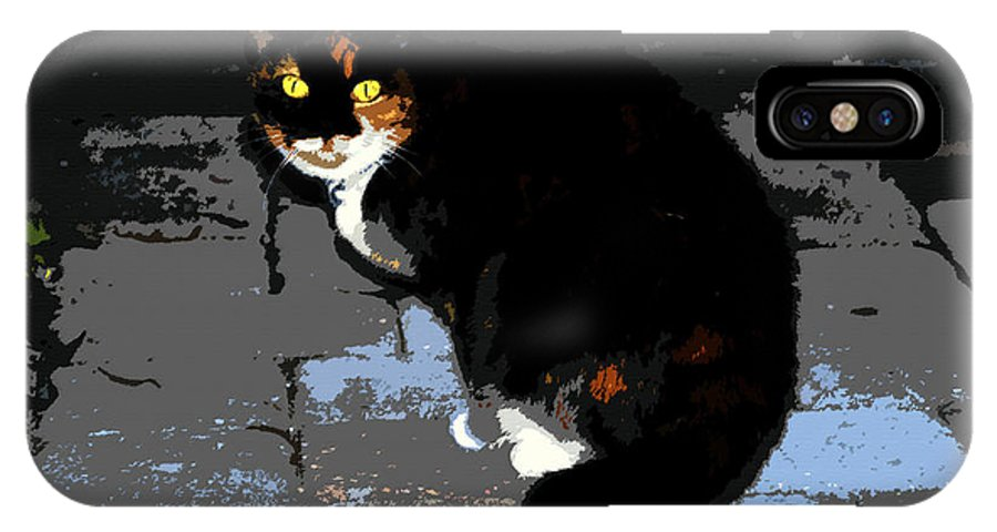 Halloween IPhone X Case featuring the painting Halloween Cat by David Lee Thompson