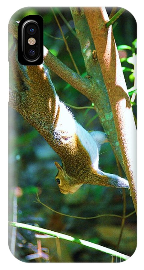 Wildlife IPhone X Case featuring the photograph Hanging Around by Eric Liller