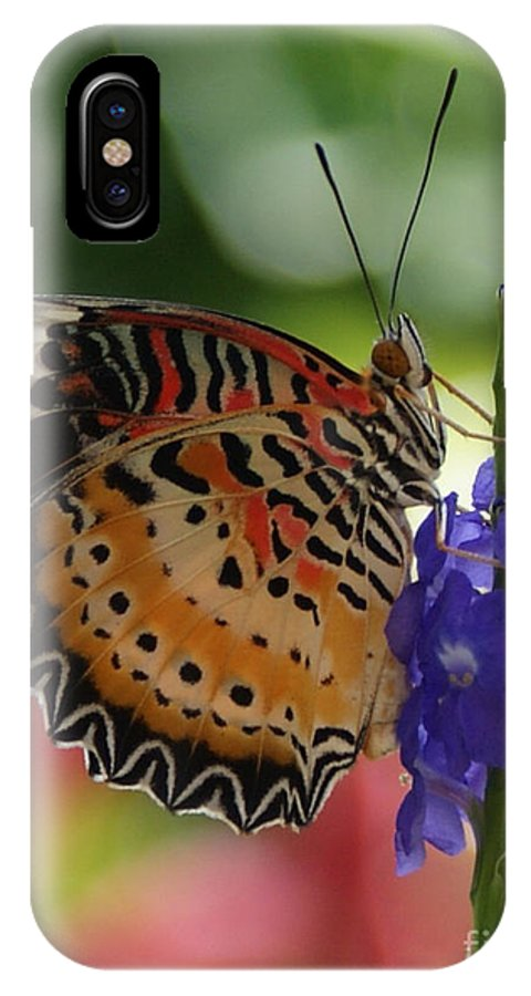 Butterfly IPhone X Case featuring the photograph Hanging On by Shelley Jones