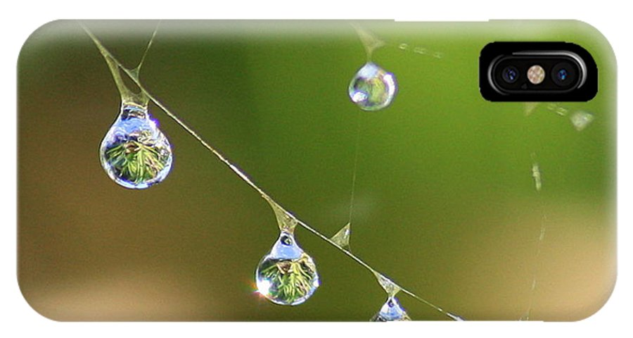 Dew Drops IPhone X Case featuring the photograph Hanging Plants by Carol Groenen
