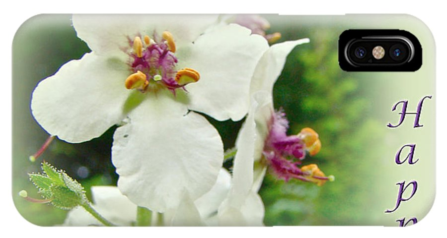 happy Birthday IPhone X Case featuring the photograph Happy Birthday - Floral - Moth Mullein by Mother Nature