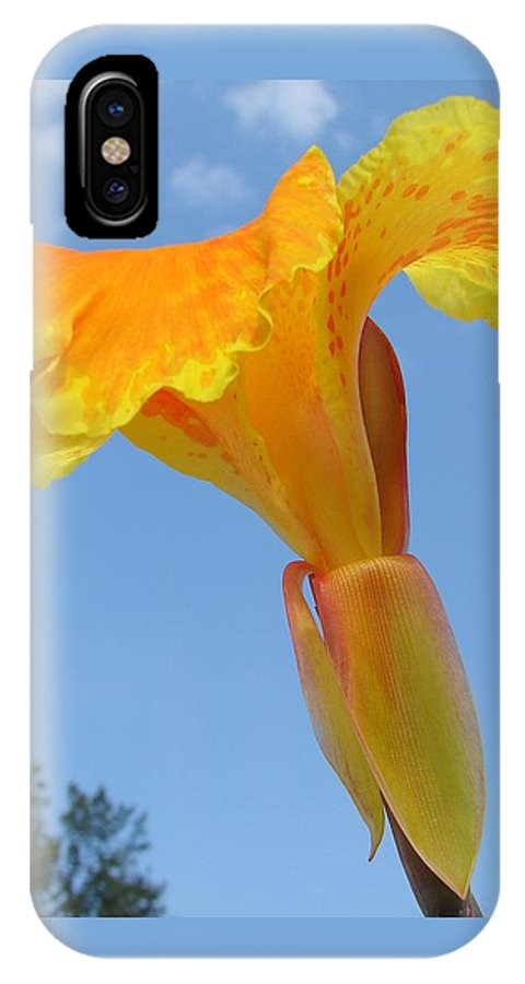 IPhone X Case featuring the photograph Happy Canna by Luciana Seymour