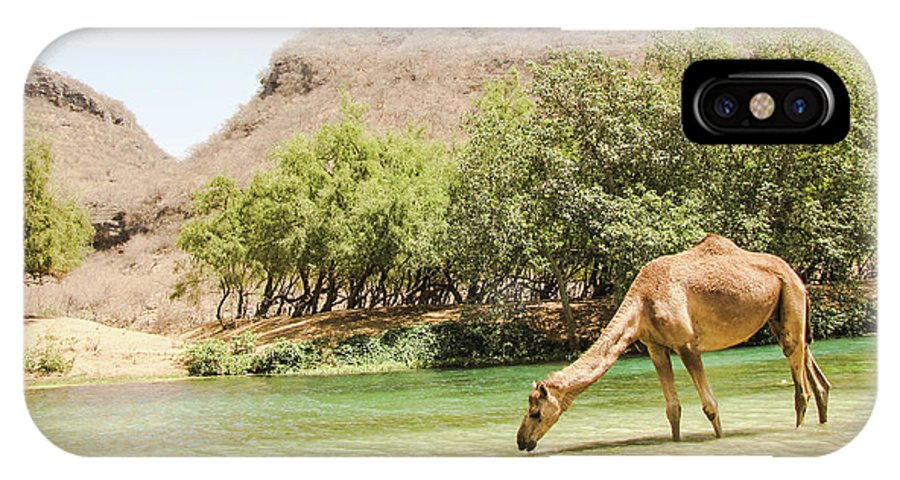 Camel IPhone X / XS Case featuring the photograph Happy Hour by Christina Zizzo