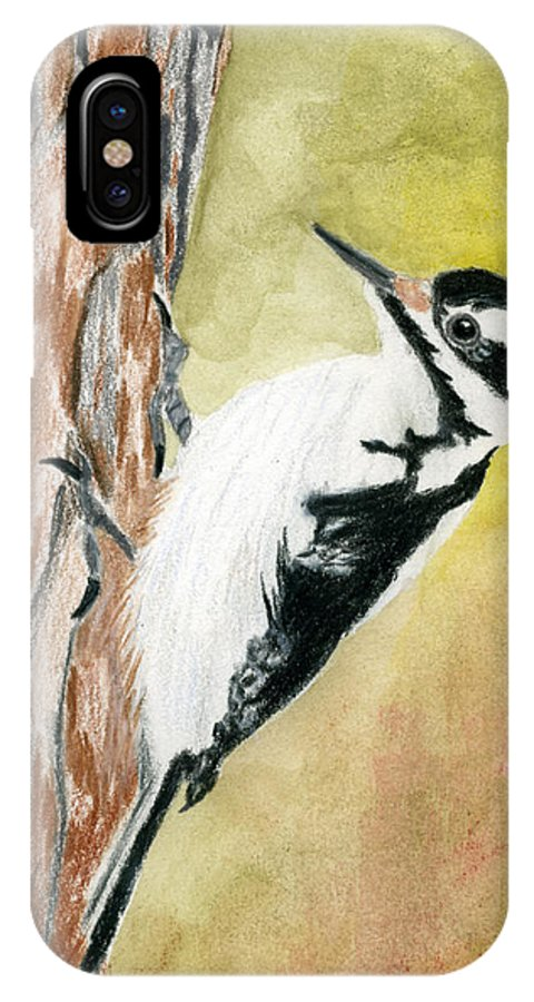 Woodpecker IPhone X Case featuring the drawing Harry The Hairy Woodpecker by Rich Stedman