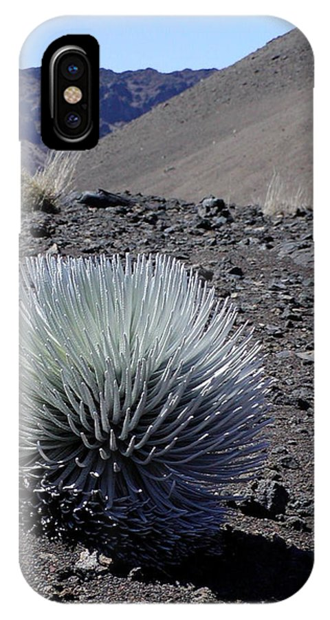 Silversword Plant IPhone X Case featuring the photograph Hawaiian Silversword Plant by Dustin K Ryan
