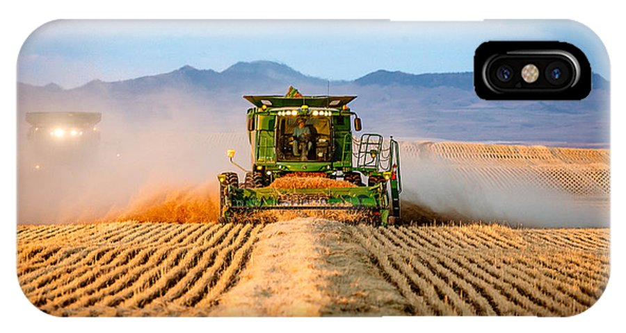 Wheat IPhone X / XS Case featuring the photograph Head On by Todd Klassy