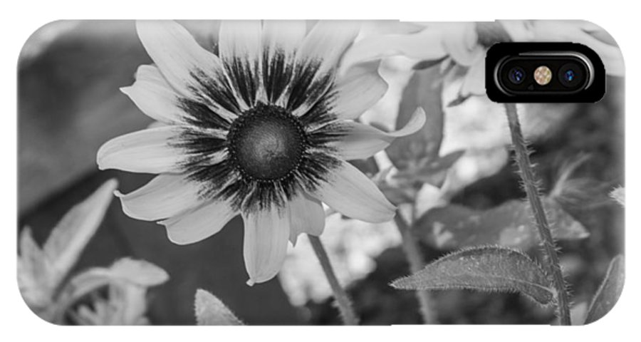 Flower IPhone X Case featuring the photograph Here I Am In Black And White by Arlene Carmel
