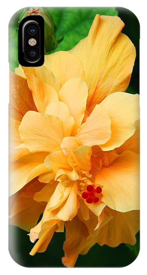 Hibiscus IPhone X Case featuring the photograph Hibiscus by Susanne Van Hulst