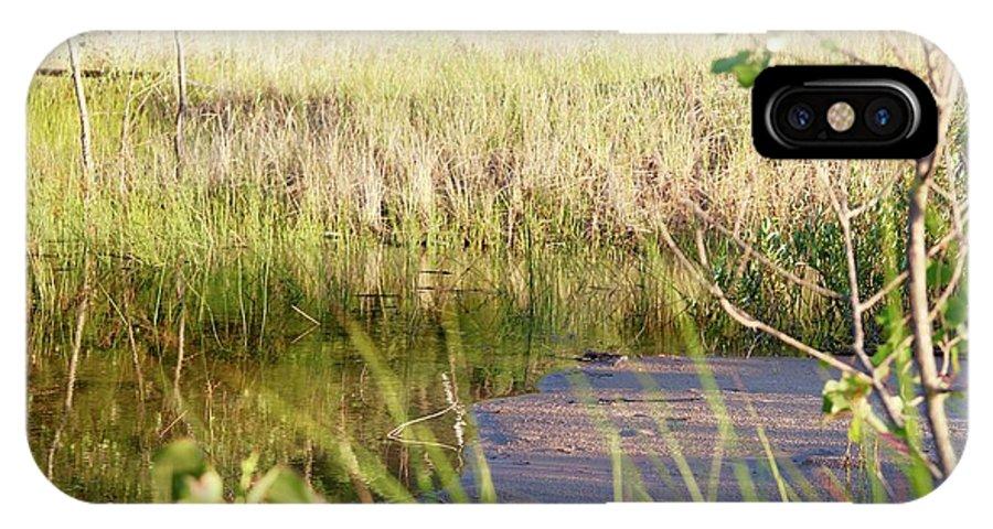 Beach IPhone X Case featuring the photograph Hidden Grass by Lauren Mohr