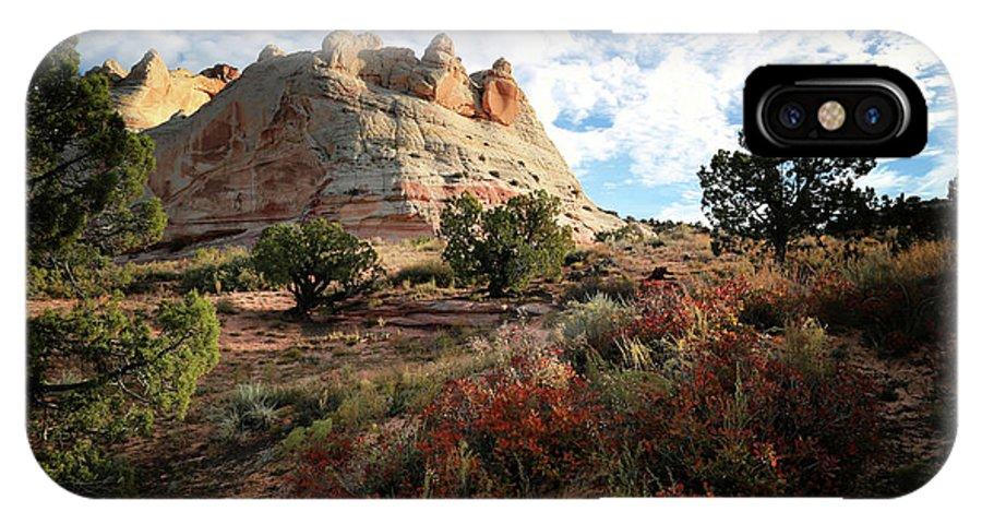 Vermillion Cliffs IPhone X Case featuring the photograph High Desert Paint by Gary Yost