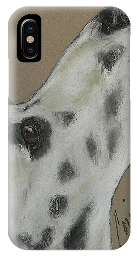 Dalmatian IPhone Case featuring the drawing Highly Motivated by Cori Solomon