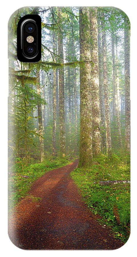 Hiking IPhone X Case featuring the photograph Hiking Trail In Washington State Park by David Gn