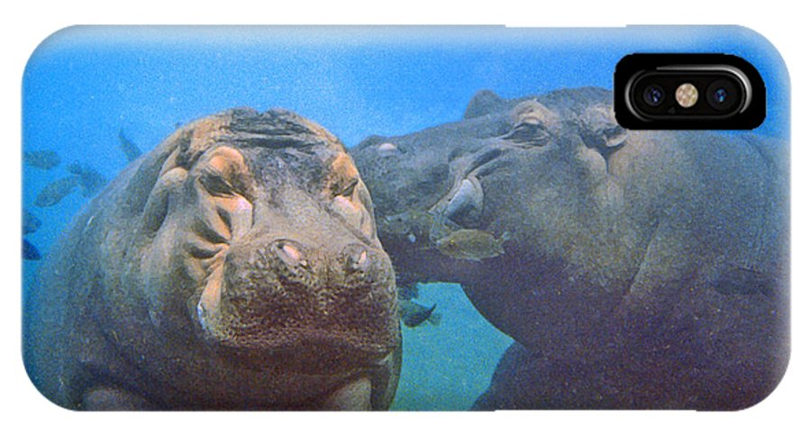 Animals IPhone X Case featuring the photograph Hippos In Love by Steve Karol
