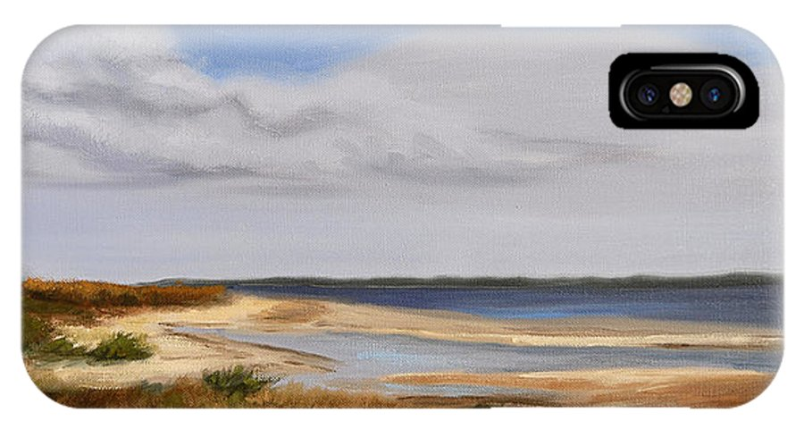 Landscape IPhone X Case featuring the painting Honeymoon Island by Greg Neal