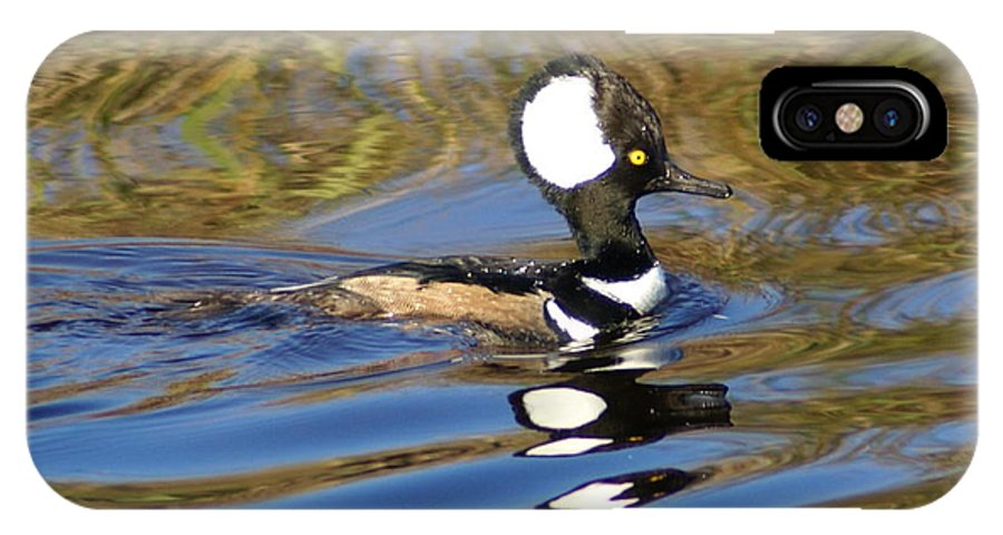 Duck IPhone X Case featuring the photograph Hooded Mersanger by Debbie May