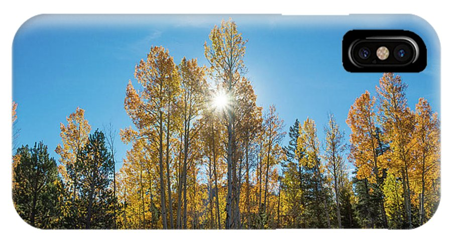 Autumn Color IPhone X Case featuring the photograph Hope For Fall by Janet Kopper