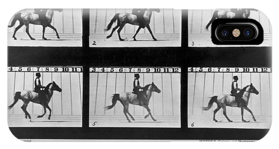 1878 IPhone X Case featuring the photograph Horse In Motion, 1878 by Granger