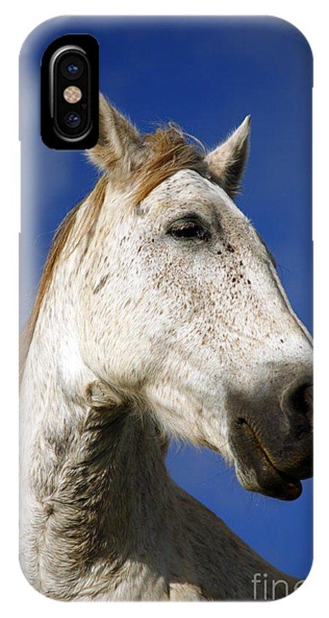Animals IPhone X Case featuring the photograph Horse Portrait by Gaspar Avila