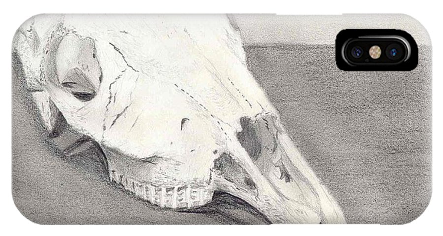 Horse IPhone X Case featuring the drawing Horse Skull by Mendy Pedersen