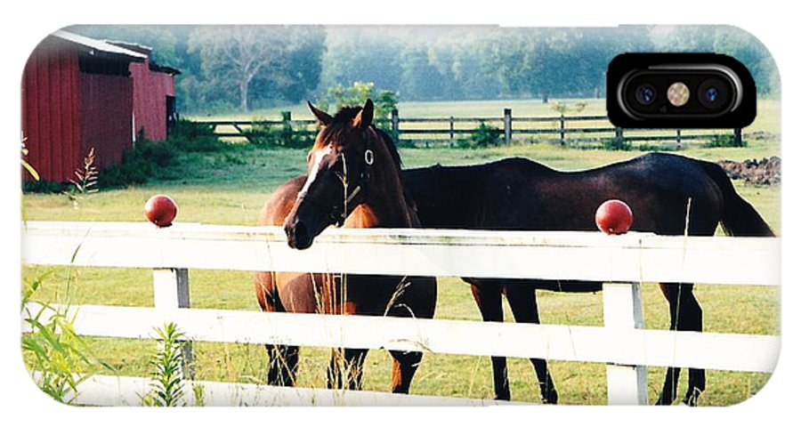 Horses IPhone X Case featuring the photograph Horse Stable by Michelle Powell