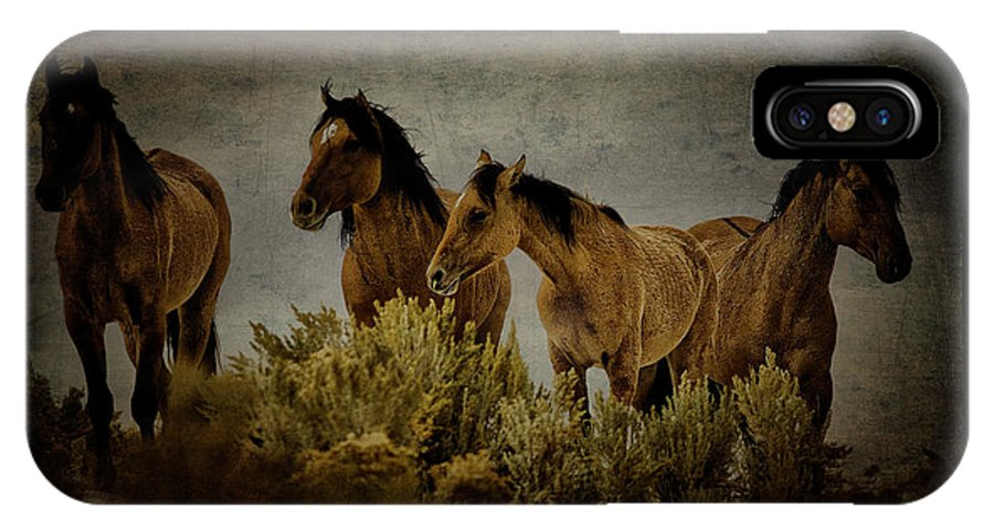 Horses IPhone X Case featuring the photograph Horses 34 by Ingrid Smith-Johnsen