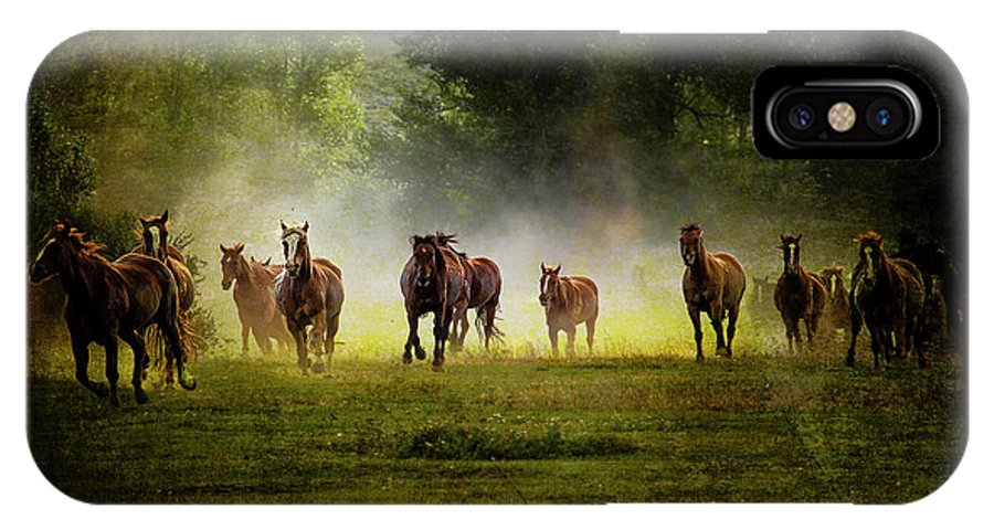 Horses IPhone X Case featuring the photograph Horses 36 by Ingrid Smith-Johnsen